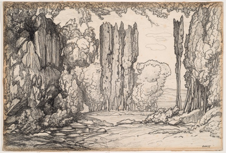 Drawing of trees, large bushes, and shrubs alongside a high cliff.