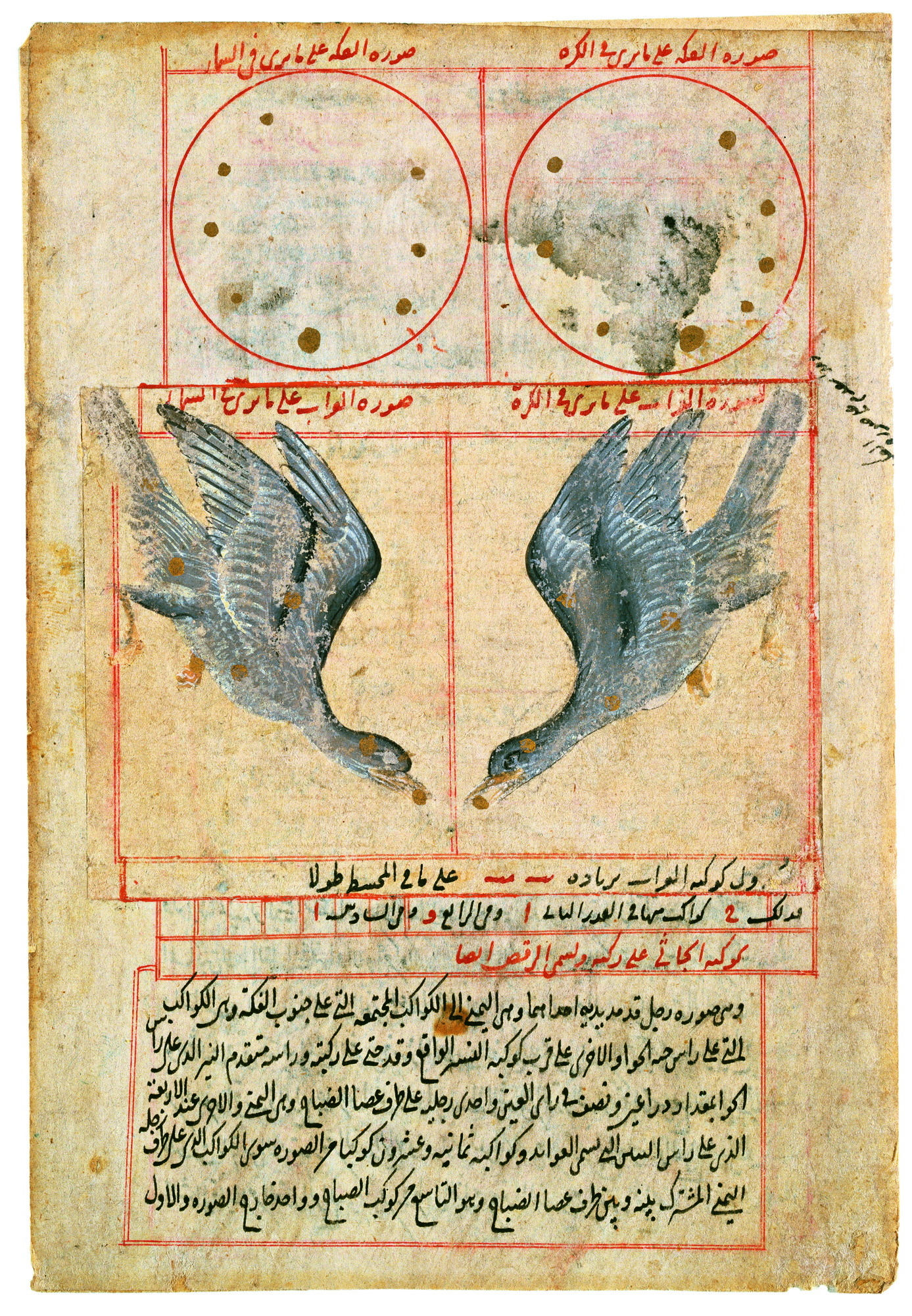 """""""Romance and Reason: Islamic Transformations of the Classical Past"""" Opens  February 14th!"""