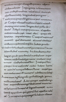Photograph of a page from a manuscript. The page is light gray in color. The text is written in an attractive hand with black ink in straight lines with ample space between them.