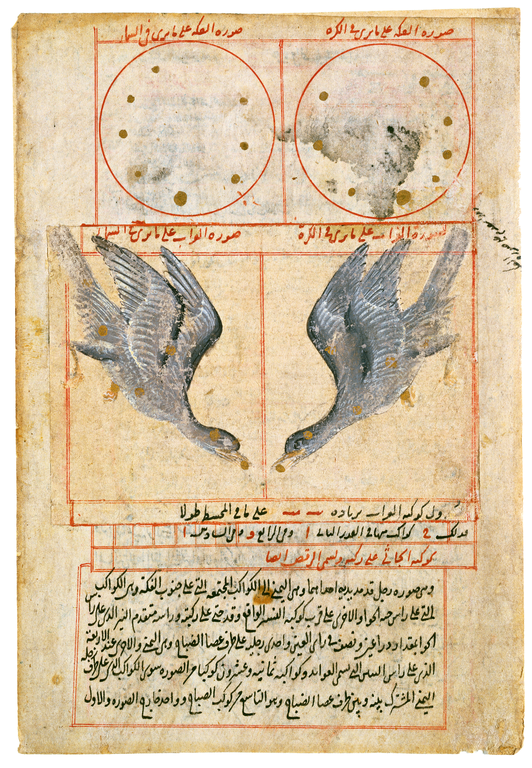 A manuscript page: at top, two large red outlined circles contain patterns of small gold dots; in a second row, red-outlined squares contain patterns of gold dots, each pattern covered by a blue-gray bird. The top two rows of figures are labeled in Arabic script in red ink. A block of Arabic script in black ink appears at the bottom.