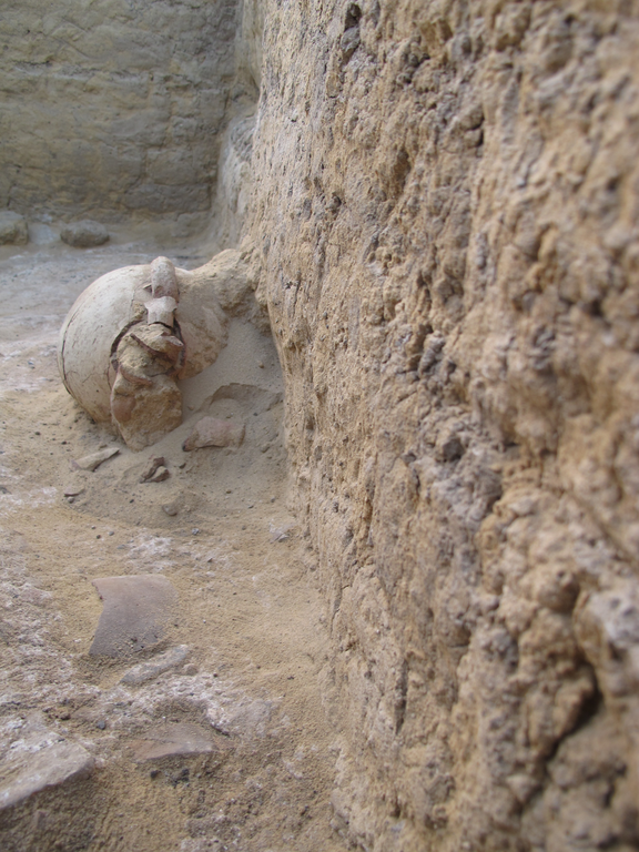 Photograph of an excavated stone wall and partially excavated floor, showing a ceramic object still embedded in the ground.